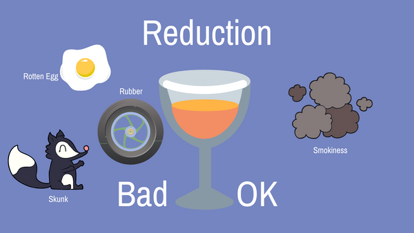 Reduction and Reductive Natural Wine Infographic