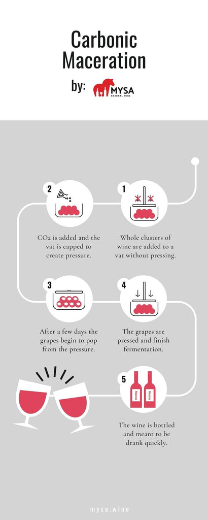 carbonic maceration guide
