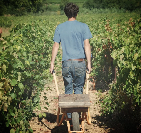 Le Petit Domaine - Natural Wine Producer