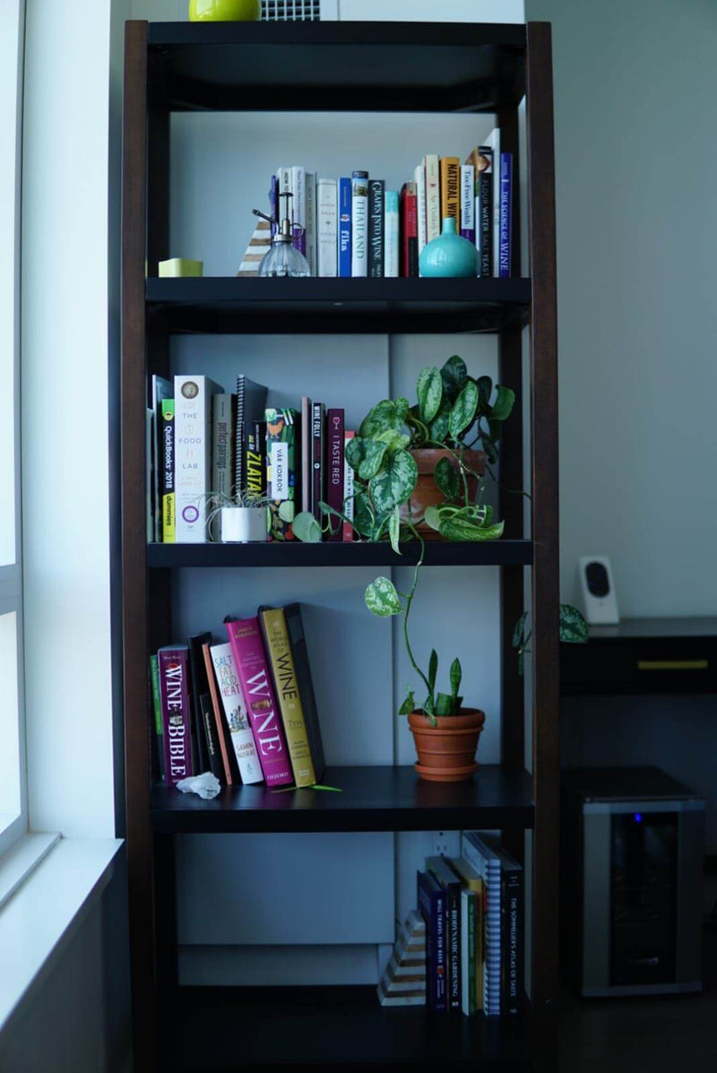 Bookshelf with plants and books on natural wine