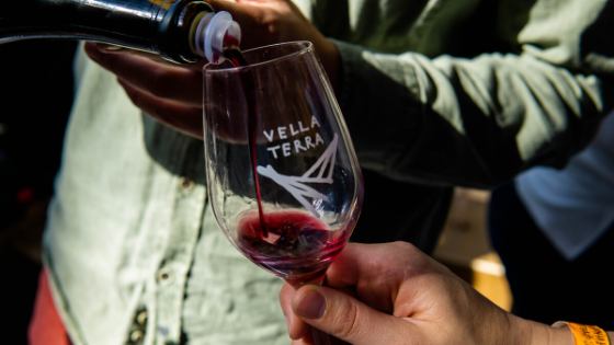 Vella Terra Natural Wine Fair Barcelona Spain