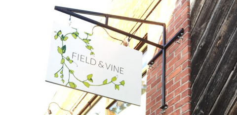 Field and Vine - Natural Wine Restaurant Boston