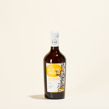 bianco-macerato-modus-bibendi-elios-natural-orange-wine-sicily-italy-front