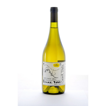 grand-itata-blanco-rogue-vine-natural-White-wine-Bio-Bio-Chile