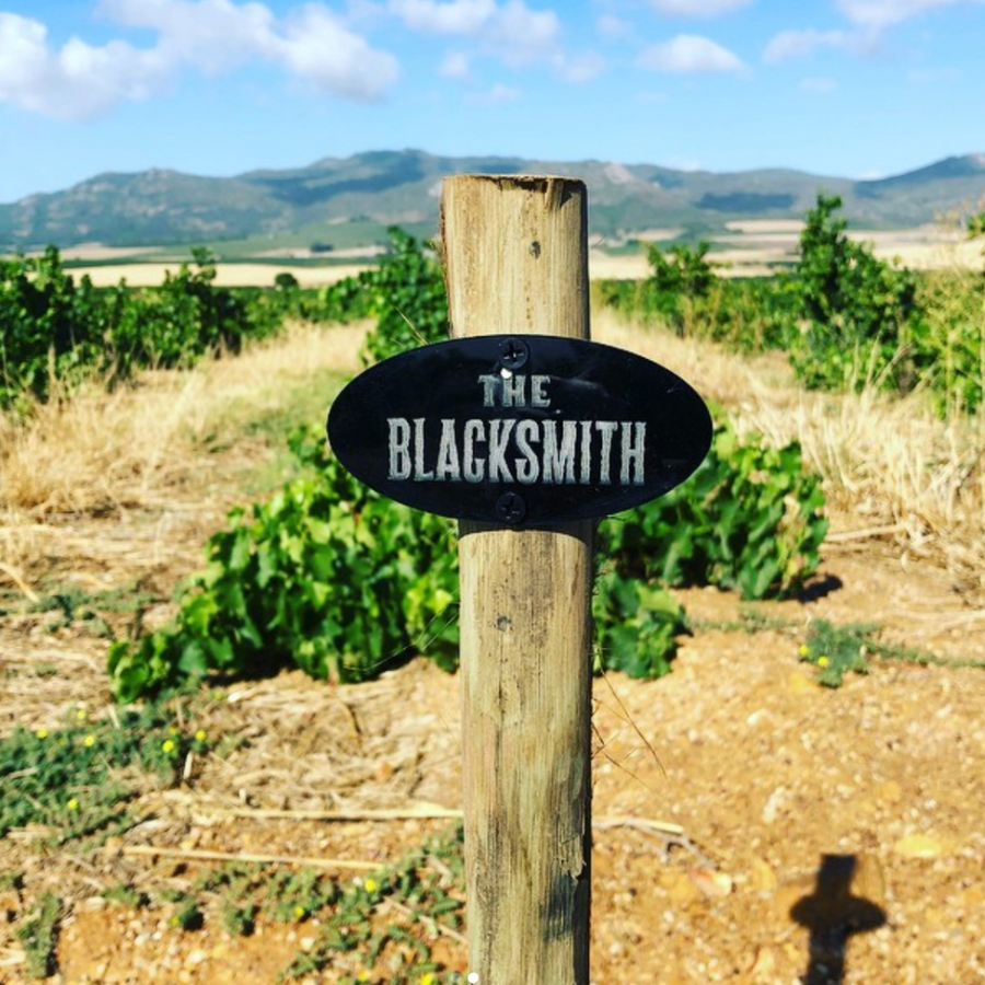 the-blacksmith-vineyard