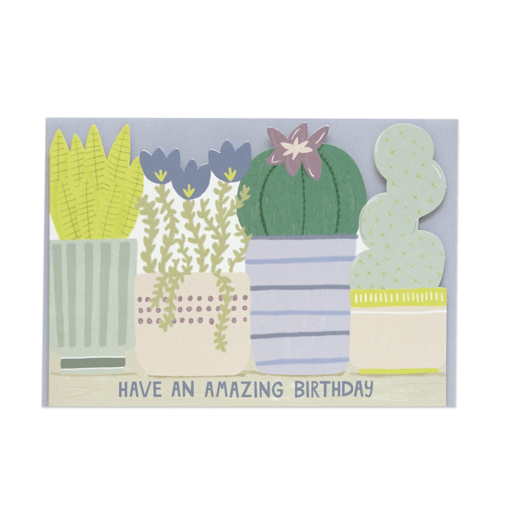 Have an Amazing Birthday card (with plants) by Raspberry Blossom