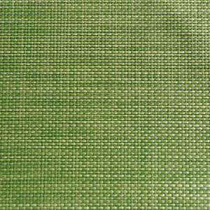 APS - Placemat Apple Green 45x33cm (β)