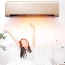 Wall-Mount Fan Heater (β)