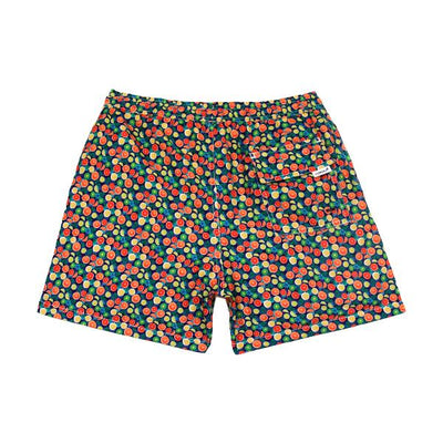 Fruits Kids Swim Trunks- Blue