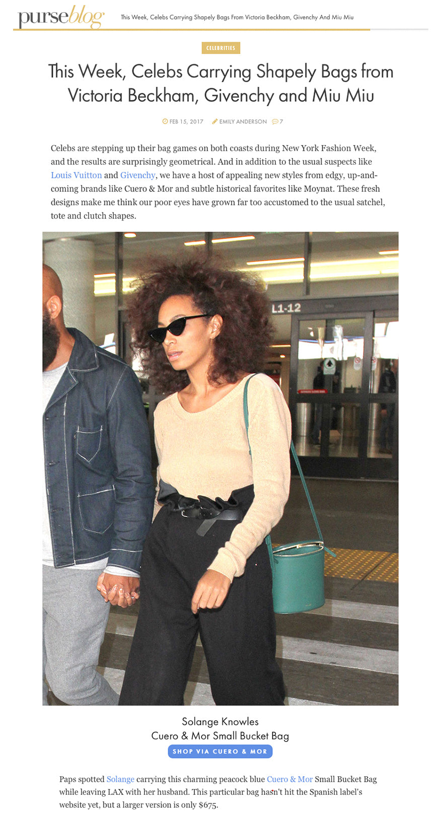 cuero_and_mor_purse_blog_solange_knowles_perla_bucket