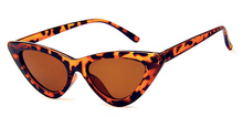 Isabella Cat Eye Sunglasses Tortoise Shell - Not Your Baby Boutique
