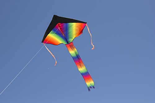 Large Delta Kite/Rainbow Kite (200' of Line) - Easy to Assemble, Launch, Fly - Premium Quality, One of the Best Kites for Kids/Kites for Adults - Great Beginner Kite