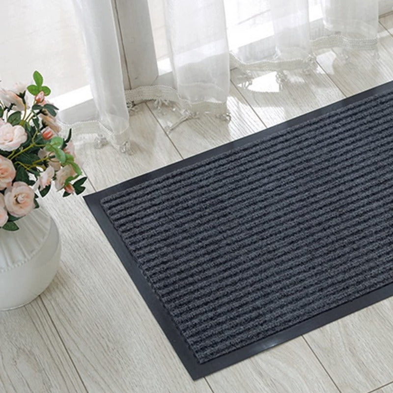 2 Pack Indoor Outdoor Floor Mats