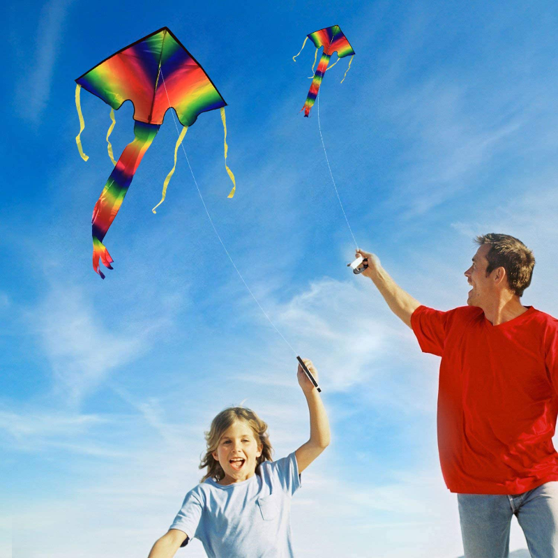Easy Flyer Rainbow Delta Kite With Kit Line And Swivel Included