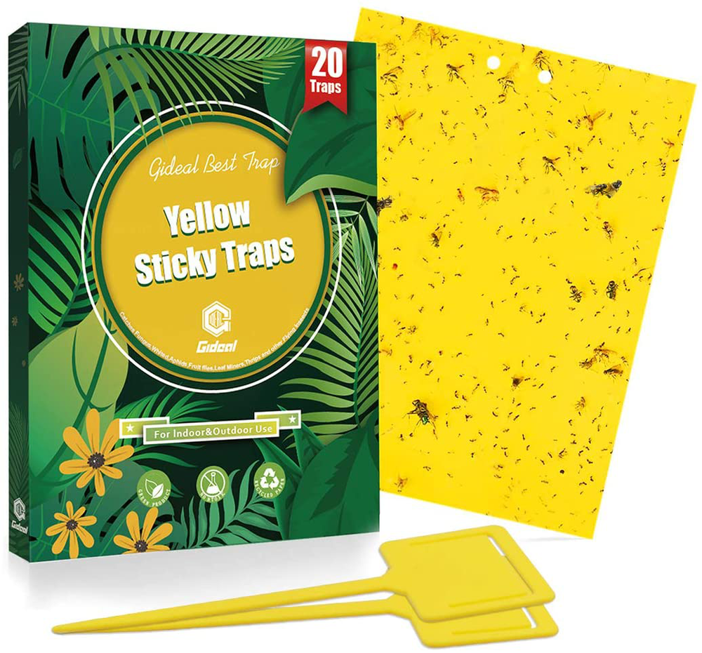 20 Pack Dual-Sided Yellow Sticky Traps for Flying Plant Insect Such as Fungus Gnats, Whiteflies, Aphids, Leafminers, and Thrips