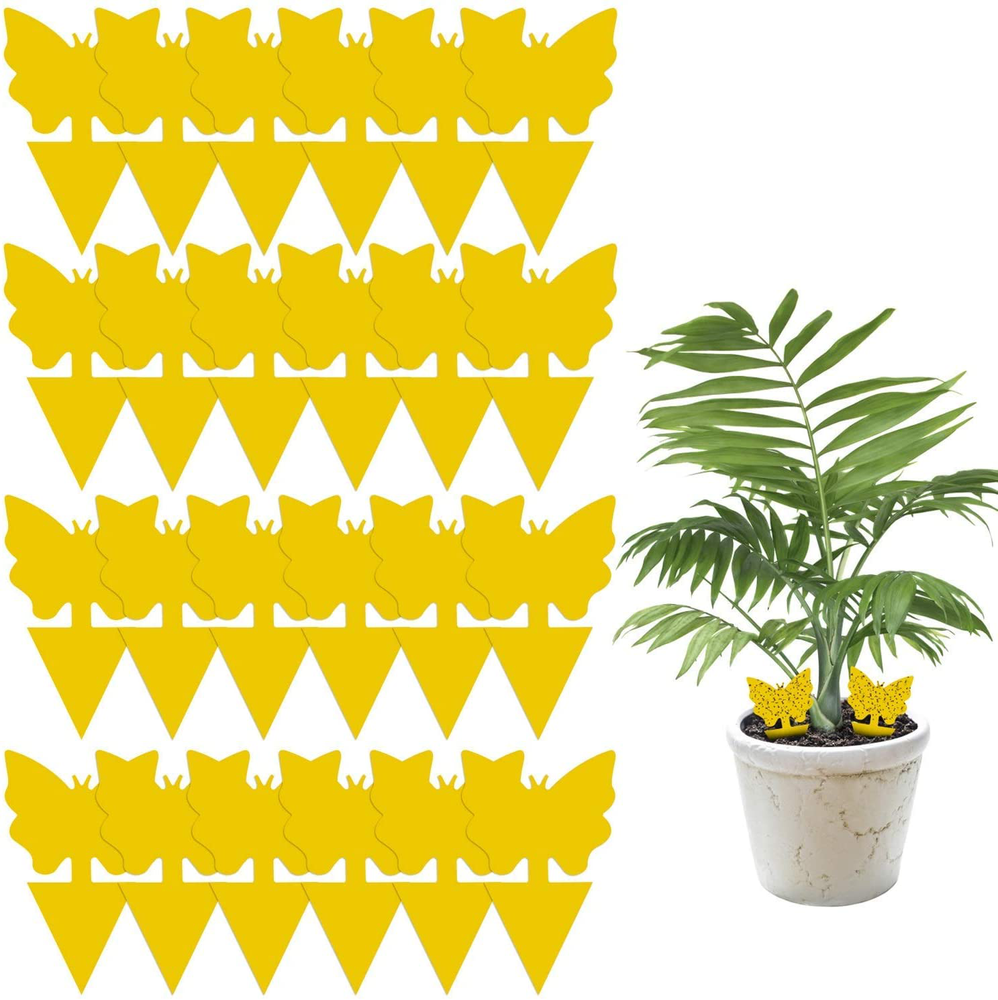24 Pack Sticky Fruit Fly and Fungus Gnat Trap Yellow Sticky Bug Insect Killer for Indoor and Outdoor Houseplants