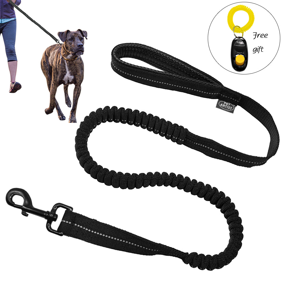 Reflective Bungee Training Dog Leash with Free Clicker