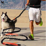 [TAILUP] Dogs Leash Running Elasticity Hand Freely Pet Products Dogs Harness Collar Jogging Lead and Adjustable Waist Rope CL153