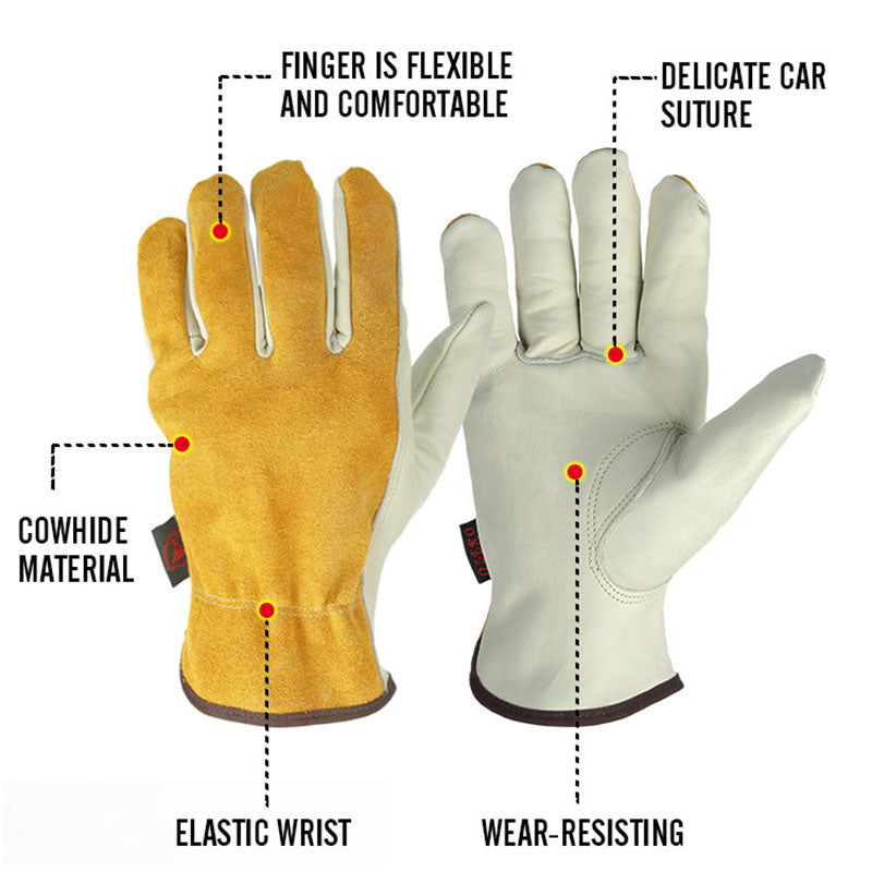 Features of glove