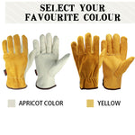 Both color of glove