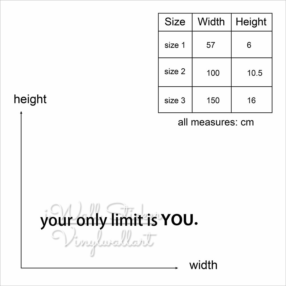 Your Only Limit is You Wall Sticker Motivational Quote Wall Sticker Removable Wall Decal Inspirational Gym Quotes Cut Vinyl Q3
