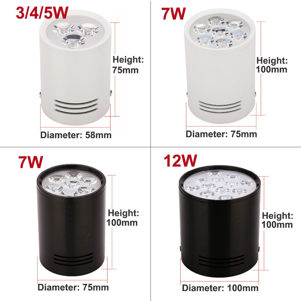 Surface Mounted LED Ceiling Lights Lamps