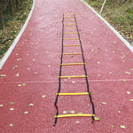 Fitness Agility Training Step Ladder