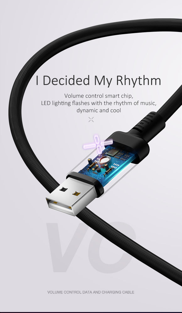 LED Color Changing Music Sync Fast Charging USB iPhone Charge Cable