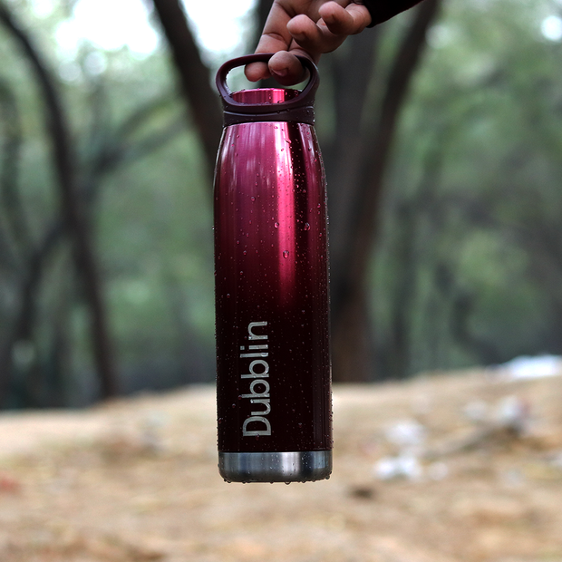 Buy Dubblin - Hiker Steel 750 ml Water Bottle online india best price