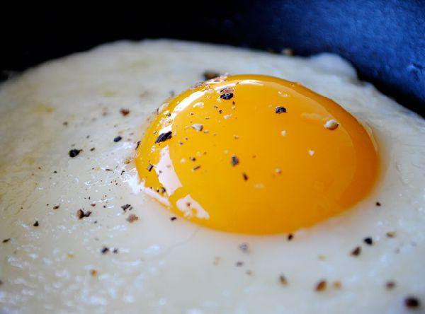 Free recipe seasoning for eggs