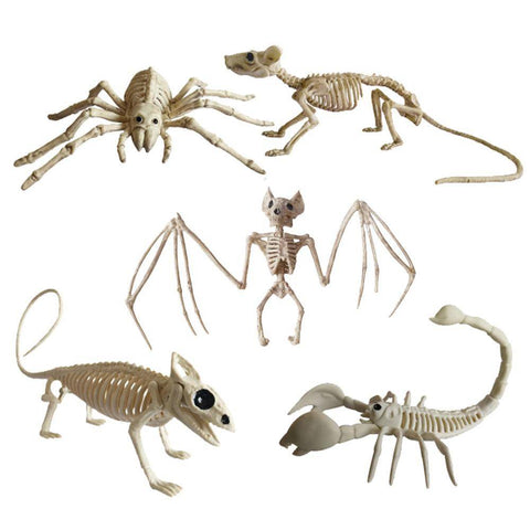Image of Animal Skeletons
