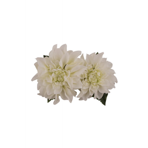 Samantha Hair Flower - White