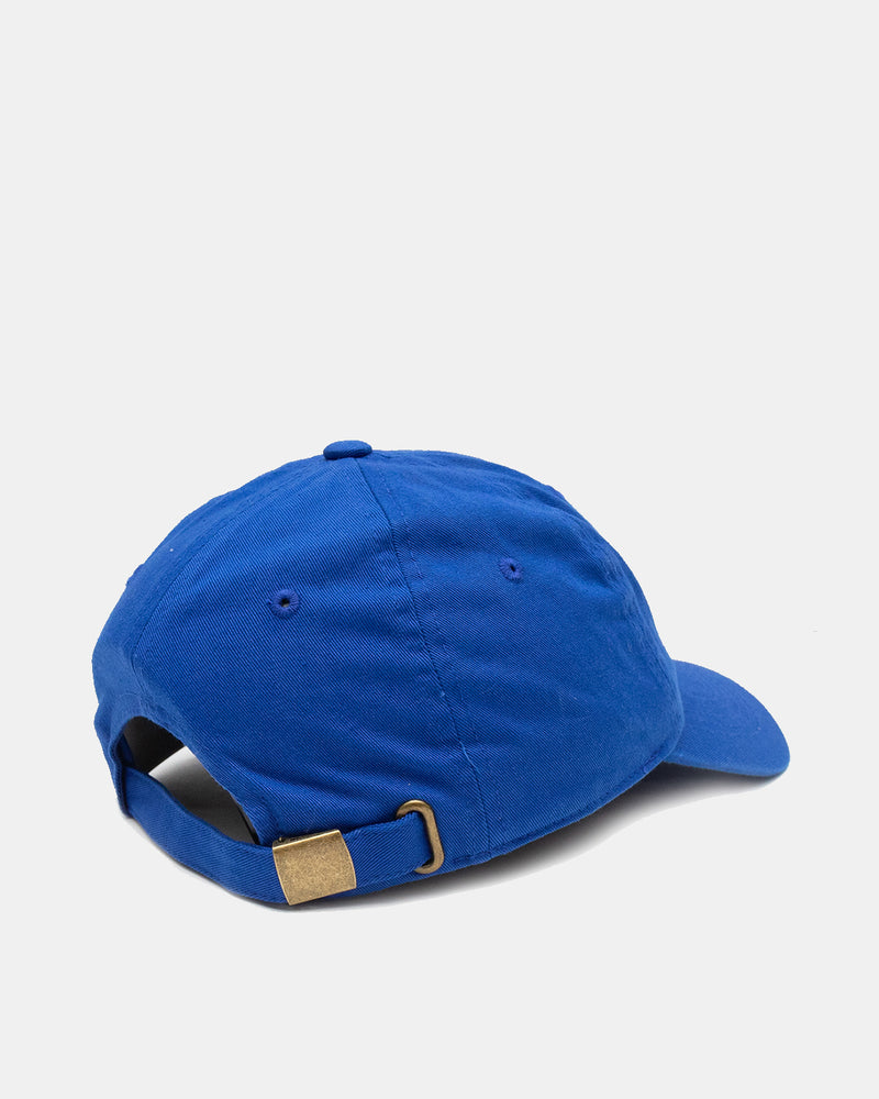 Health is Wealth Hat (Lapis)