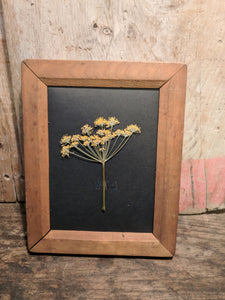 Photography frame