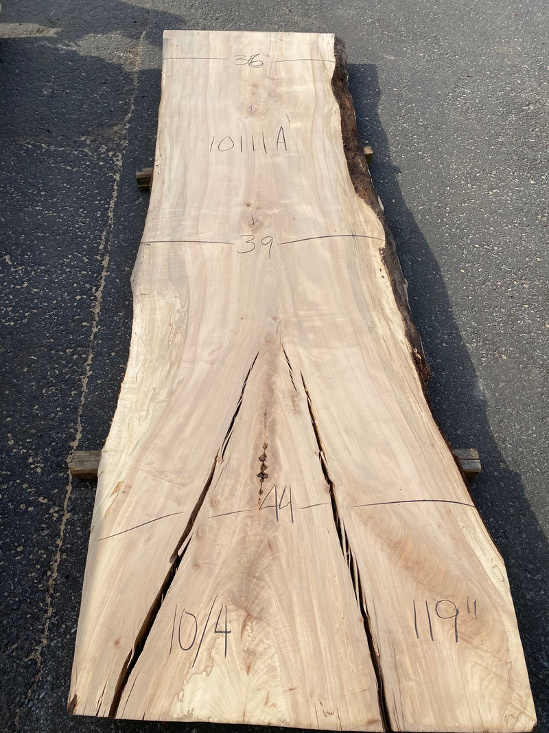 "Spalted Maple Live Edge Slab- 2-1/2"" x 44"" x 36"""
