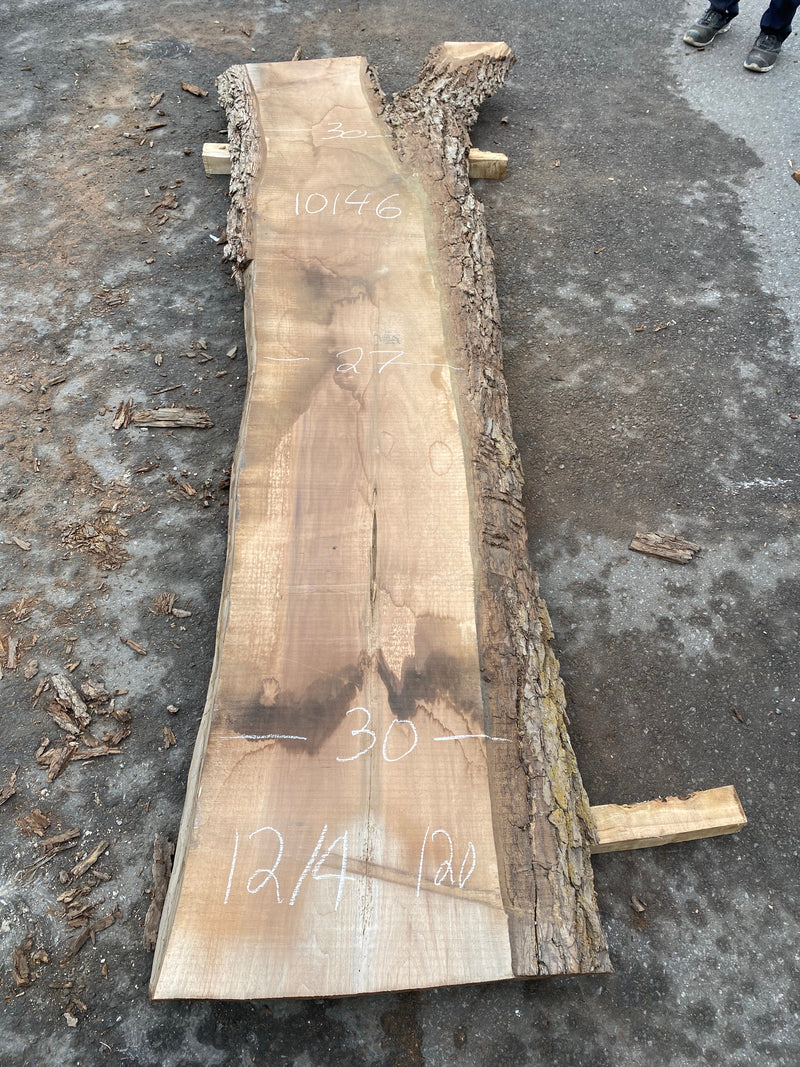 "Live Edge Walnut Slab - 3"" x 27"" x 120"""