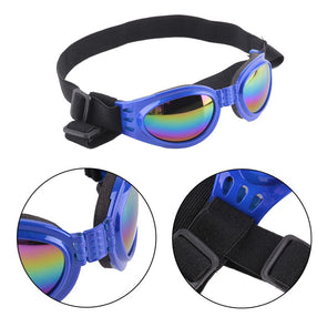 Small Pet Polarized Goggles