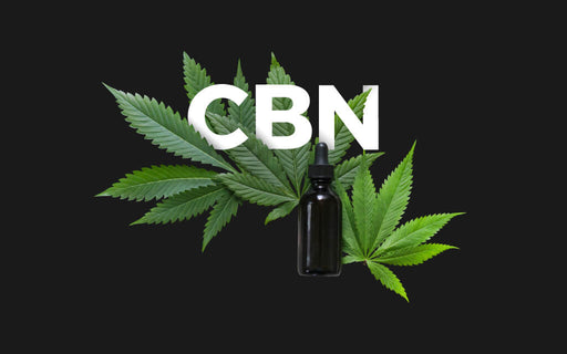 Let's Talk About CBN