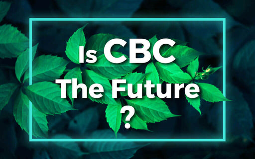 Is CBC The Future?