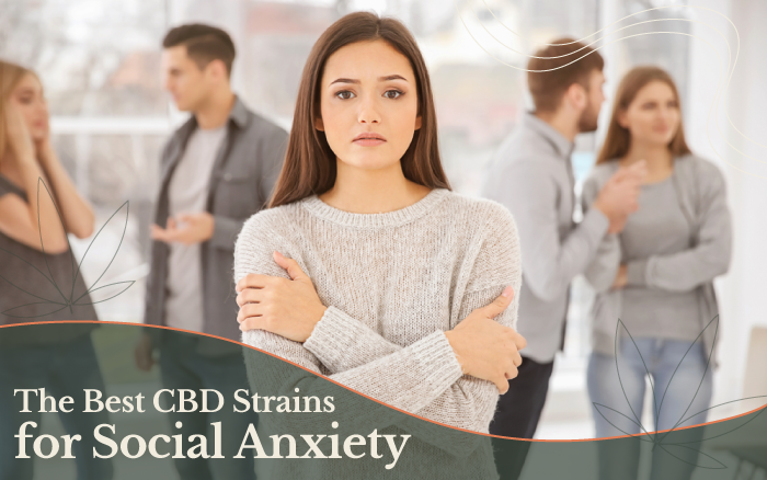 The 8 Best CBD Strains for Social Anxiety