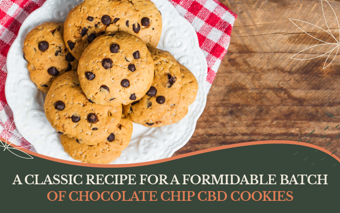 A Classic Recipe for a Formidable Batch of Chocolate Chip CBD Cookies
