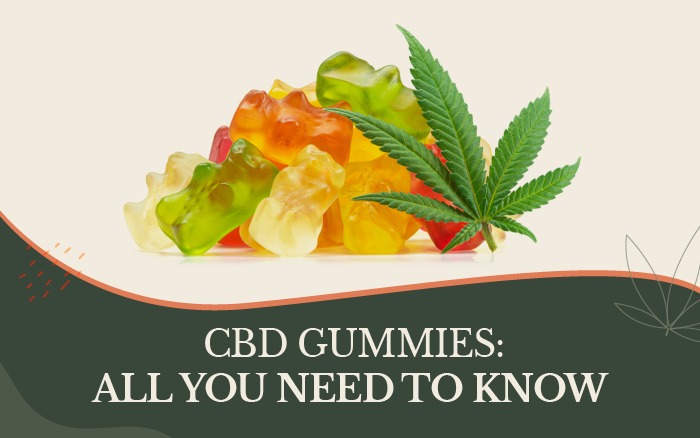 CBD Gummies: All You Need to Know