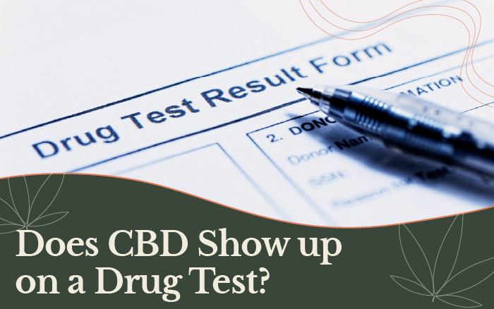 Does CBD Show up on a Drug Test? [Urine Drug Test]