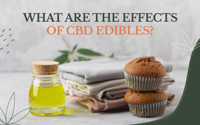 CBD Edibles: Everything You Should Know Before Eating Them