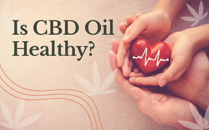 Is CBD Oil Healthy?: Uses, Benefits, and Risks
