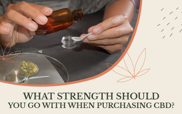 CBD Product Potency & Strength [What You Need to Know Before Choosing]