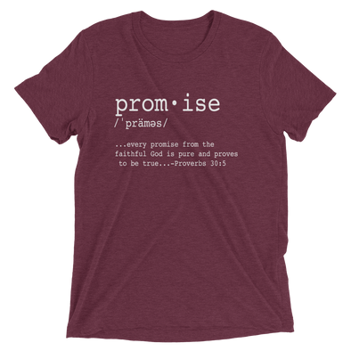 """Promises Defined"" Unisex T-Shirt -Maroon - Divine Design Fitness"