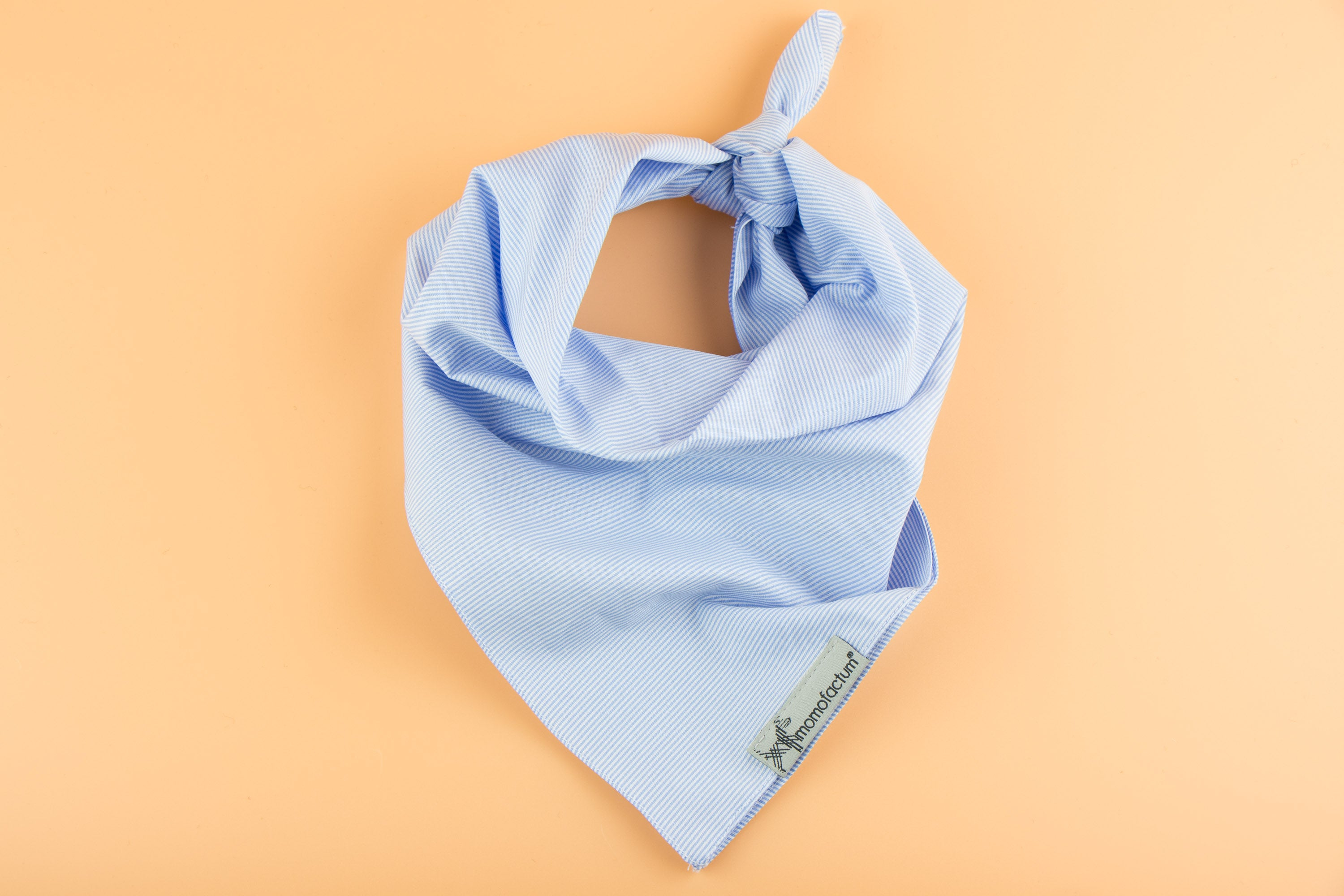Summer Blue - Dog Bandana