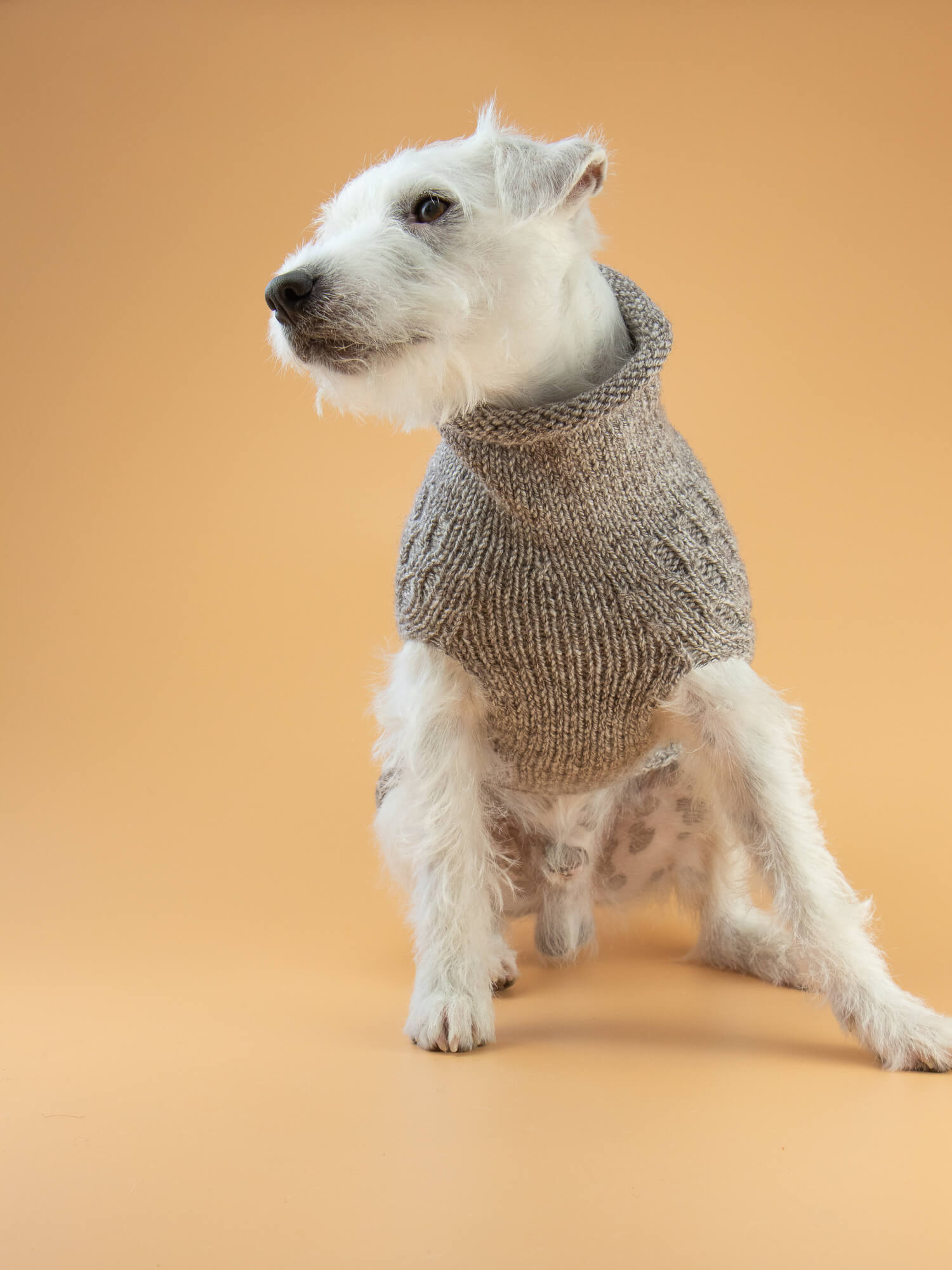 Knitted Jumper Rache