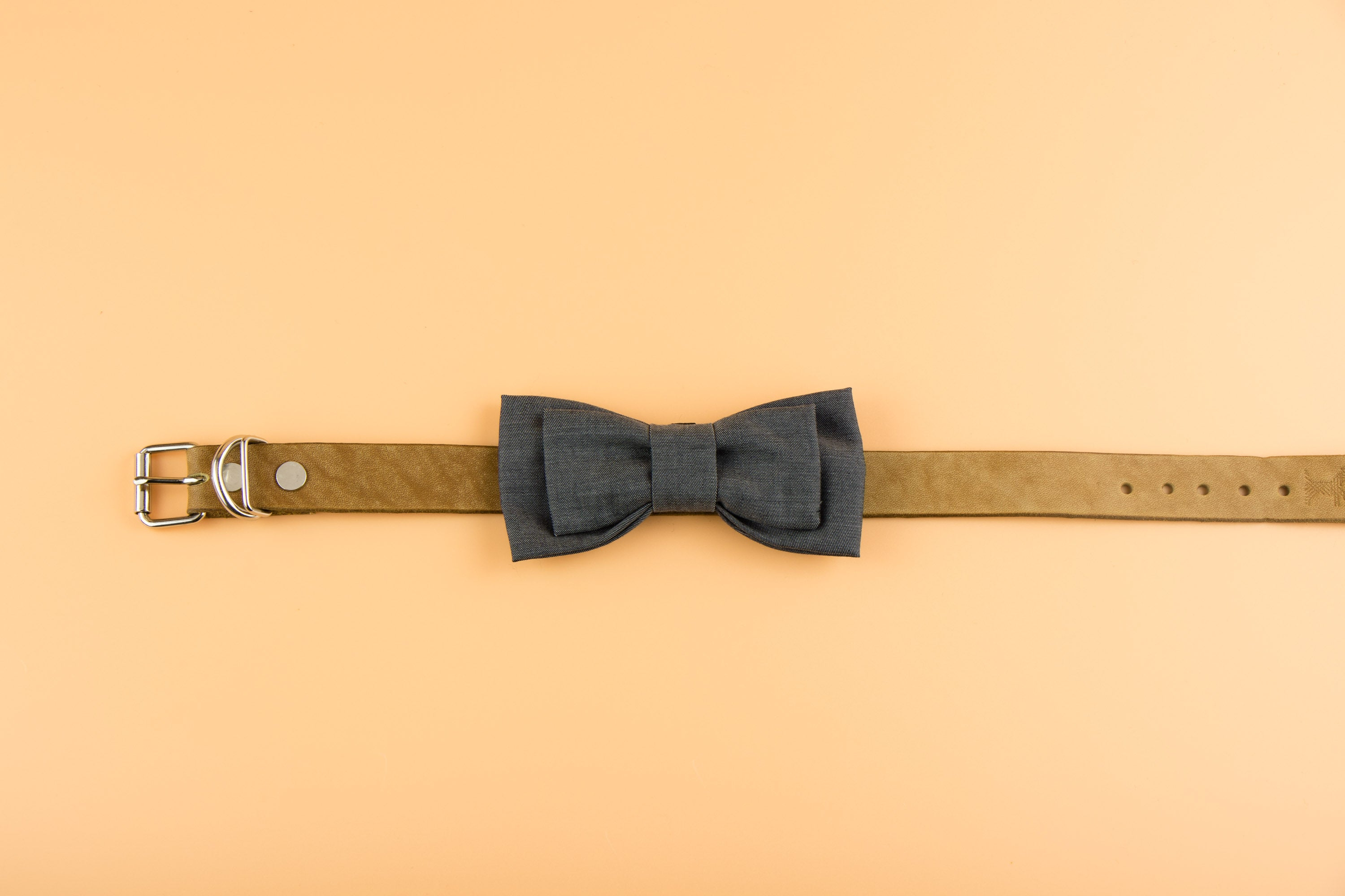 Suit Style - Dog Bow Tie